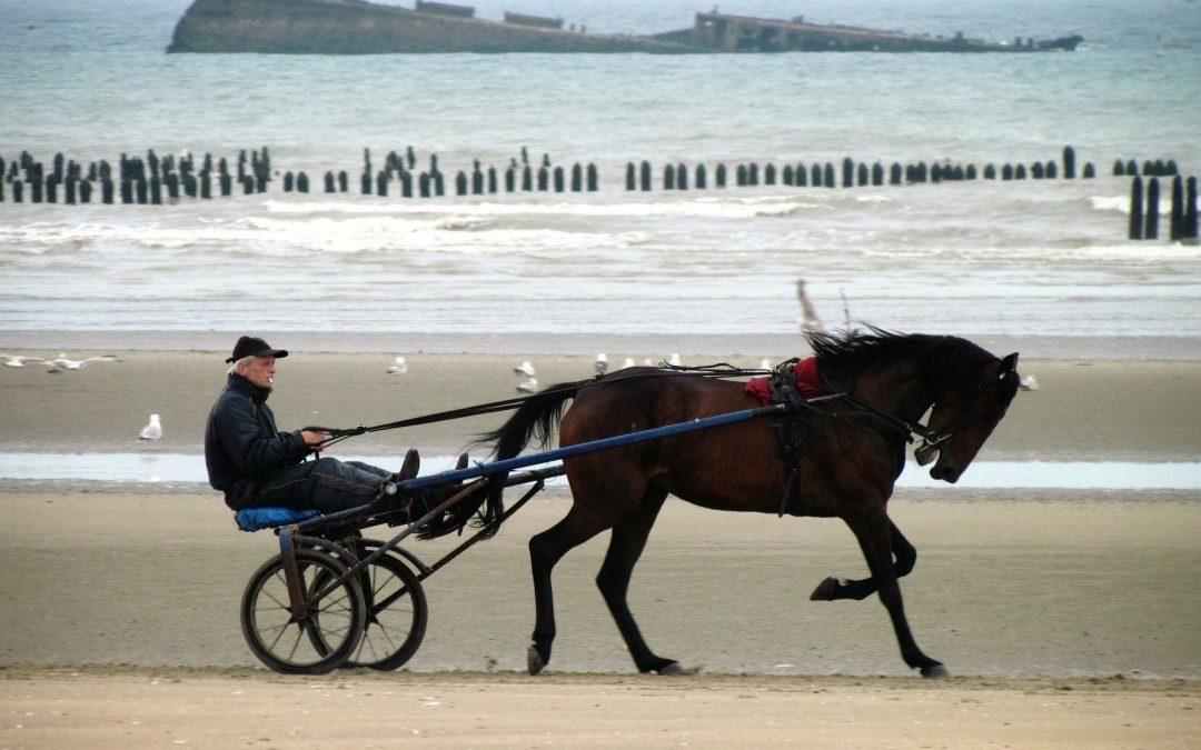 Visiter la Normandie en été
