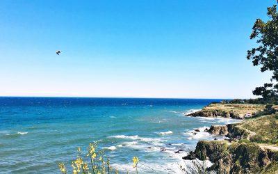 Offrez vous une pause à Argelès Sur Mer